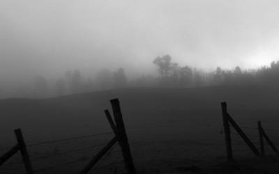 Fence 03