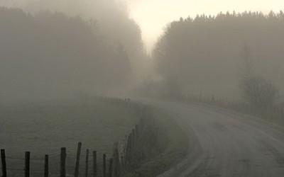 Road in morning fog